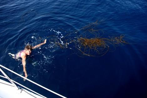 Flaute: Marlies entfernt Seegras, das sich am Kiel verfangen hat